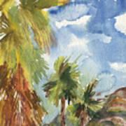 Calm Palms Poster