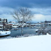 Camden Harbor In The Snow Poster
