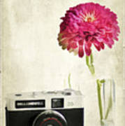 Camera And Flowers Poster