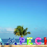 Campeche Sign And Sea View Poster