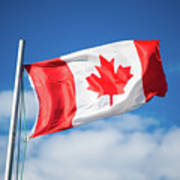 Canadian Flag Flying Proudly Poster