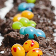 Candy Bird Nests  Poster