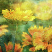 Candy Corn 2770 Idp_2 Poster