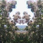 Candy Floss Greek Bush Poster