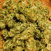 Cannabis Bowl Poster