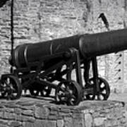 Cannon At Macroom Castle Ireland Poster