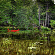 Canoe Among The Reeds Poster