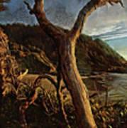 Cape Perpetua Sunset Poster