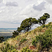 Capulin Volcano View Panorama New Mexico Poster