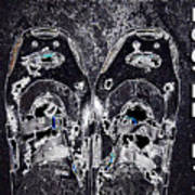 Carbon Footprint Poster
