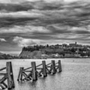 Cardiff Bay Dolphins Mono Poster