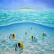 Caribbean Island Dream Poster