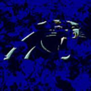 Carolina Panthers 1e Poster