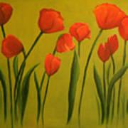 Carolina Tulips Poster