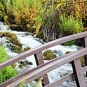 Cascade Bridge Poster