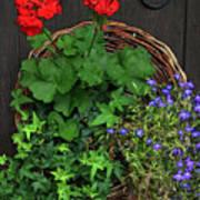 Cascade Of Flowers Poster