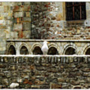 Castle Bird Poster