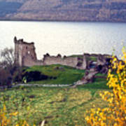 Castle Ruins Scotland Poster