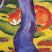 Cat Behind A Tree Poster