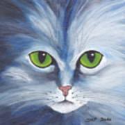 Cat Eyes Blue Poster