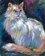 Cat In A Sun Painting By Svetlana Poster
