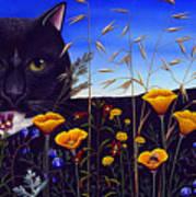 Cat In Flower Field Poster