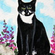 Cat In The Garden Poster