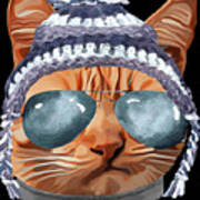 Cat Kitty Kitten In Clothes Aviators Toque Beanie Poster