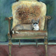 Cat On A Chair Poster