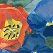 Cat Tulip Poster