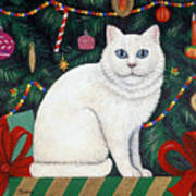 Cat Under The Christmas Tree Poster