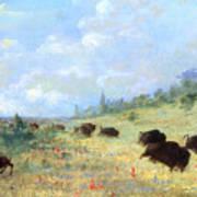 Catlin: Elk & Buffalo Poster