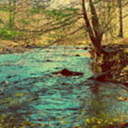 Catoctin Spring Poster