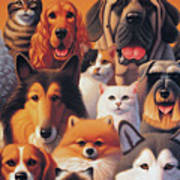 Cats And Dogs  Poster