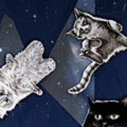 Cats In Space Poster
