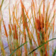 Cattails By The Lake Poster