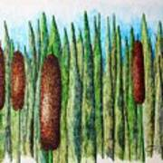 Cattails 1 Poster