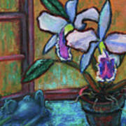 Cattleya Orchid And Frog By The Window Poster