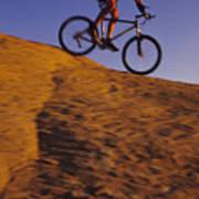 Caucasian Male Mountain Biking Poster by Bobby Model