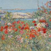 Celia Thaxter's Garden, Isles Of Shoals, Maine, 1890 Poster