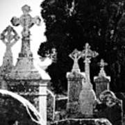Celtic Crosses At Fuerty Cemetery Roscommon Ireland Poster