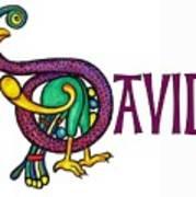 Decorative Celtic Name David Poster