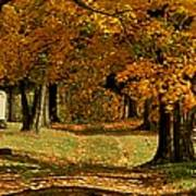 Cemetary Road In Autumn Poster