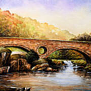 Cenarth Bridge And Falls Poster