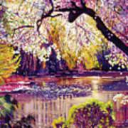 Central Park Spring Pond Poster by David Lloyd Glover