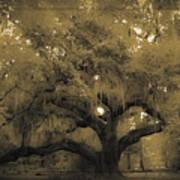 Centurion Oak Poster