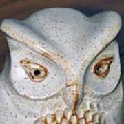 Ceramic Owl. Poster
