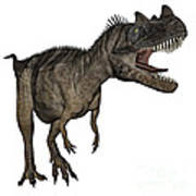 Ceratosaurus Dinosaur Roaring Poster