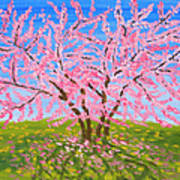Cercis Tree, Oil Painting Poster