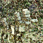 Chairs In Backyard Poster